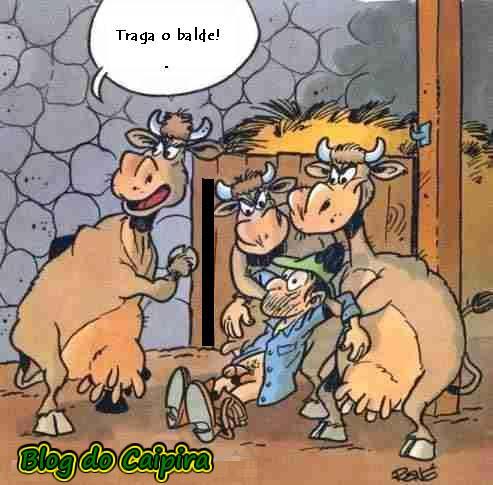 vacas tirando leite