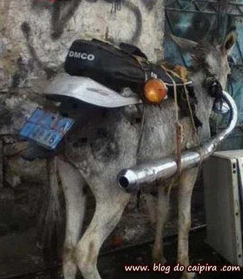 motocicleta para trilha