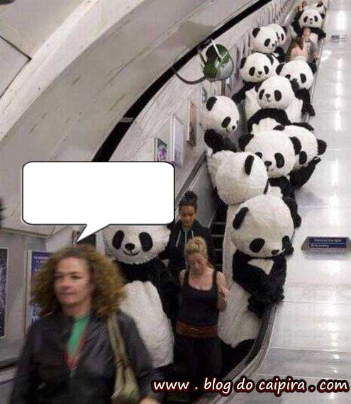 pandas assassinos